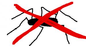 spider NO