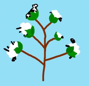 cottonsheep