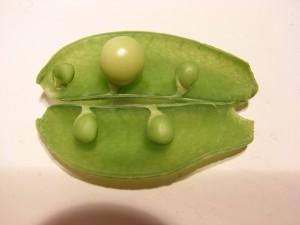 pea-man